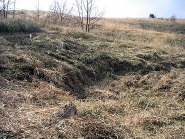 ドリーネ耕作地の草刈り-4