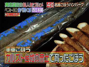 【第4位】 『美東ごぼうハンバーグ』-2