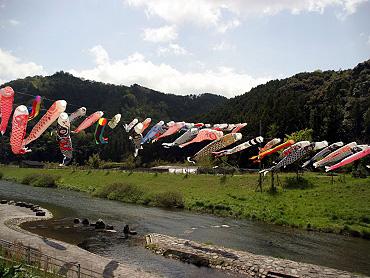 大田川のこいのぼり-2009-2