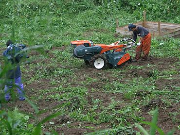 ドリーネの開墾作業-4