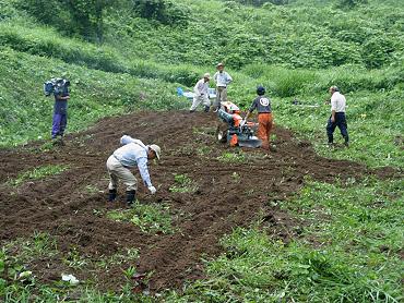 ドリーネの開墾作業-6