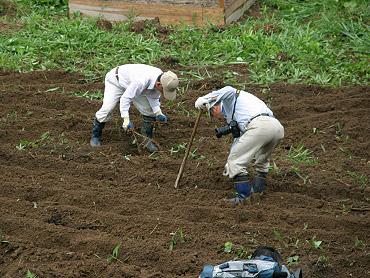 ドリーネの開墾作業-7