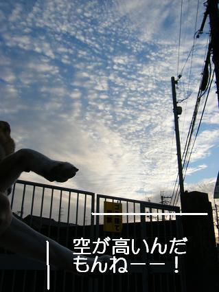 10 12 08空が高い日