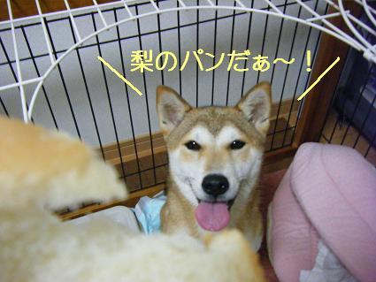 09 07 梨パン1