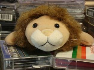 lion_first