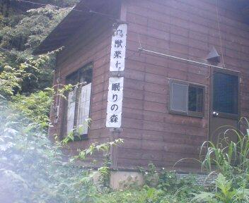 雛鶴隧道5