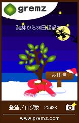 1230114152_03736.jpg