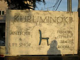 kuruminoki02.jpg