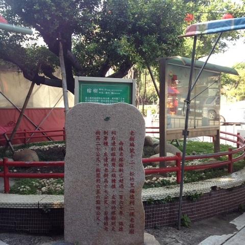 201201009-0001.jpg