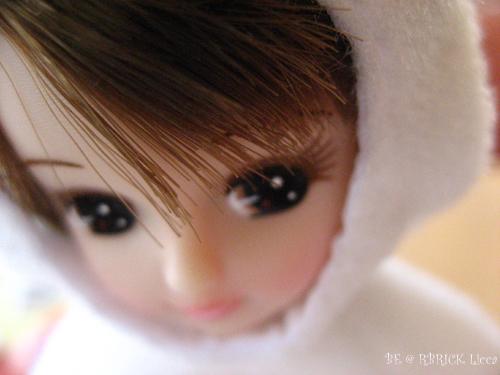 lc080406-1.jpg