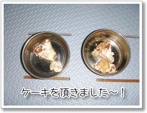 PICT0117.jpg