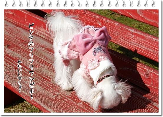 ピンクのワンピ4