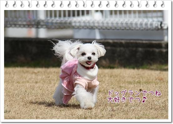 ピンクのワンピ6