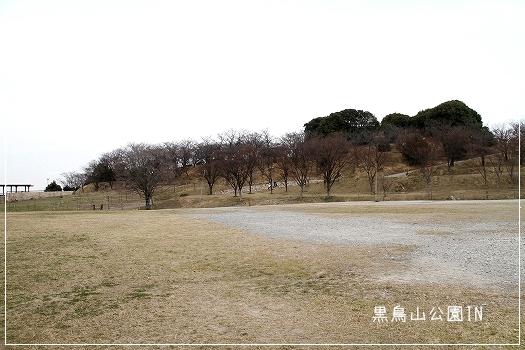 黒鳥公園1