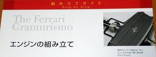 s1-RCM_II_20090701_3452.jpg