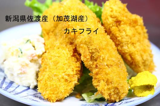 佐渡加茂湖産かき カキフライ