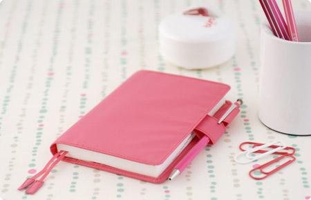 techo_pink.jpg