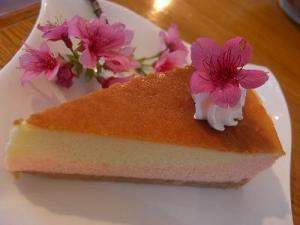sakura-cake.jpg