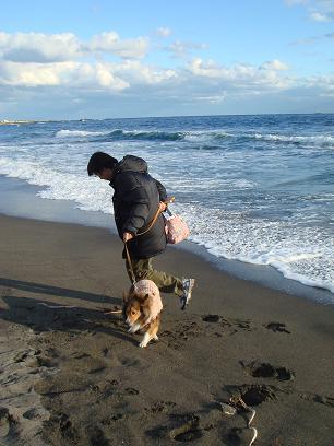 白浜散歩2