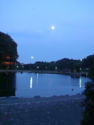 幻想的な湖畔