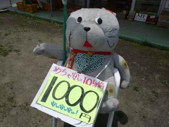 P1040126.jpg
