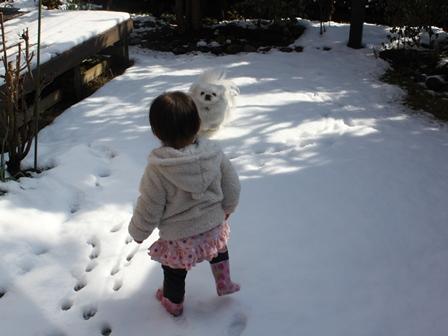 snow2011_2.jpg