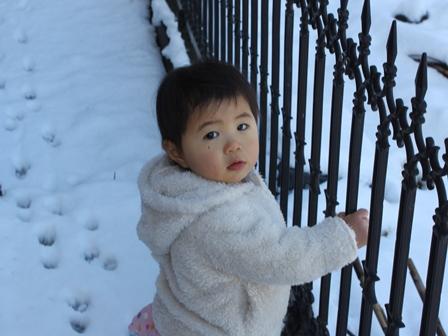 snow2011_3.jpg