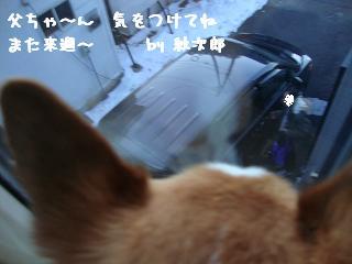 お見送り紋兄2