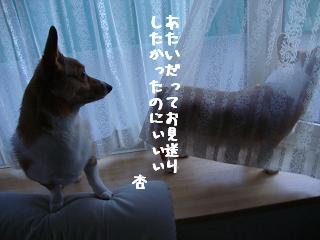 お見送り紋兄&杏