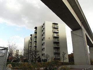 ibaragi4-3.jpg