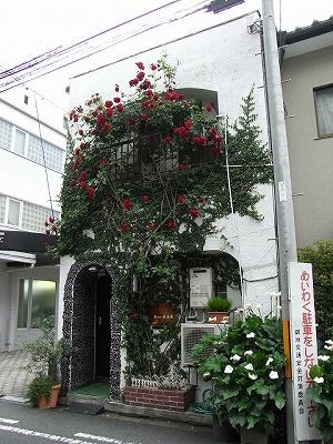 kyoto-biyouin2.jpg