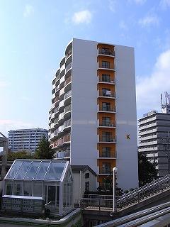minamiibaragi-orange1.jpg