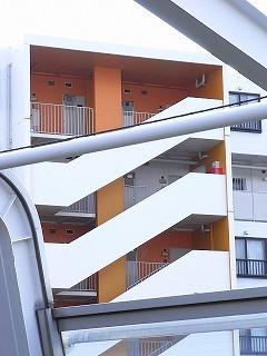 minamiibaragi-orange5.jpg