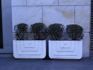 planter3-1.jpg