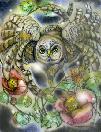 椿と夜を翔けるフクロウWE