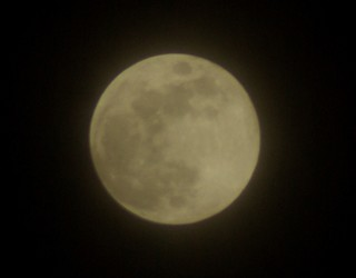 同じ月を見ている