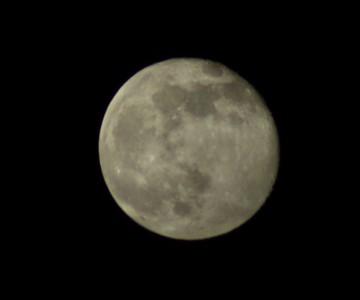 だって月はいつもそこにあるんだもん