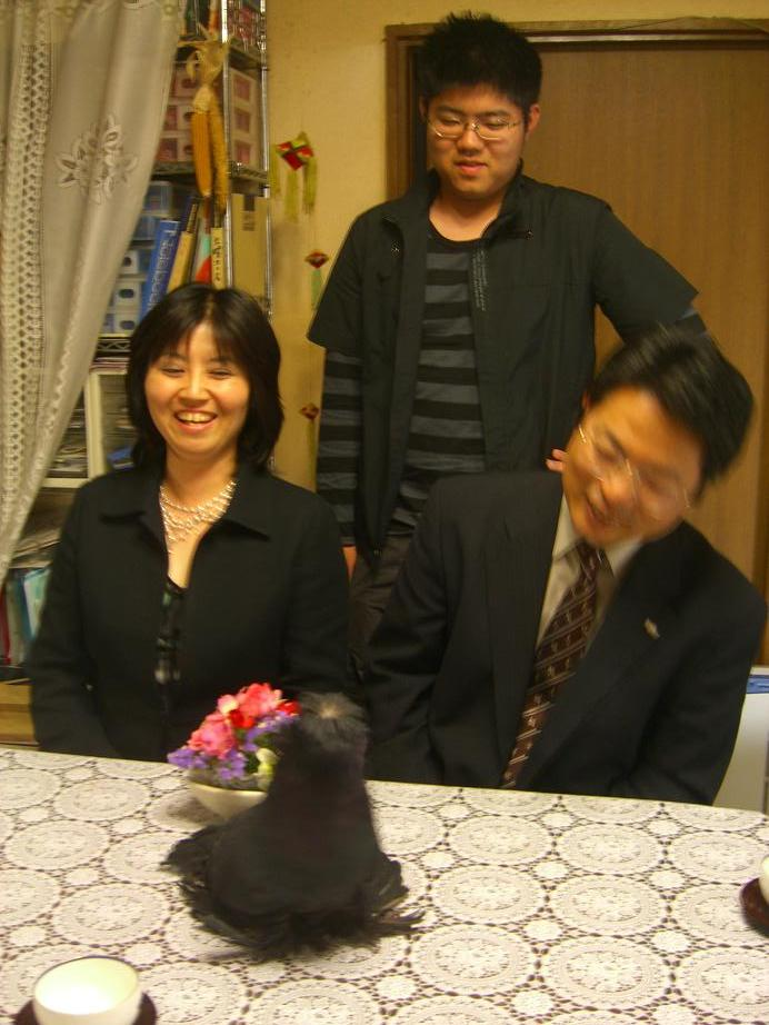 2007,4,15