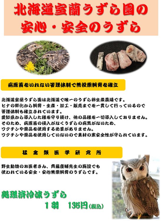 北海道ウズラー002