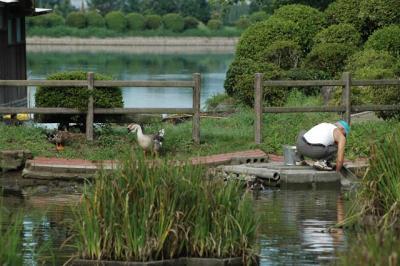 siroyama0808092003.jpg