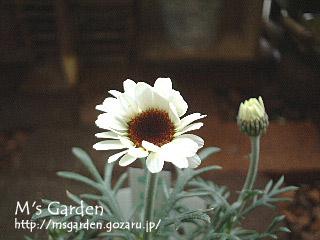 2006-02-24-2.jpg