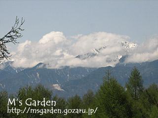 2008-05-04-06.jpg
