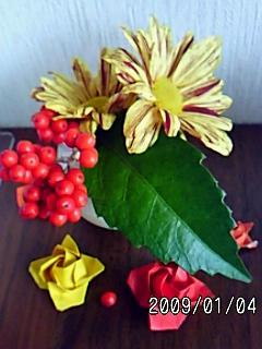 PA0_0052_20090106072226.jpg