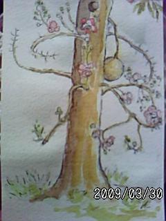PA0_0060_20090615053933.jpg