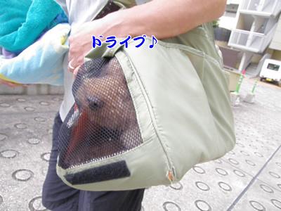 20090717_1.jpg