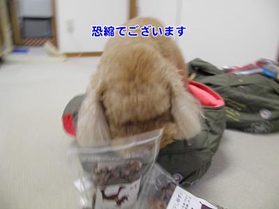 20090725_16.jpg