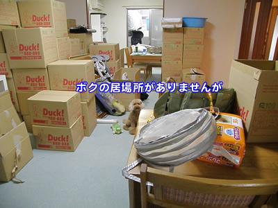 20090727_10.jpg