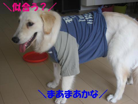 IMG_2598.jpg