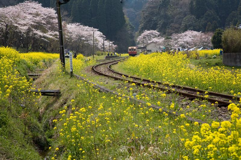 小湊鐵道10