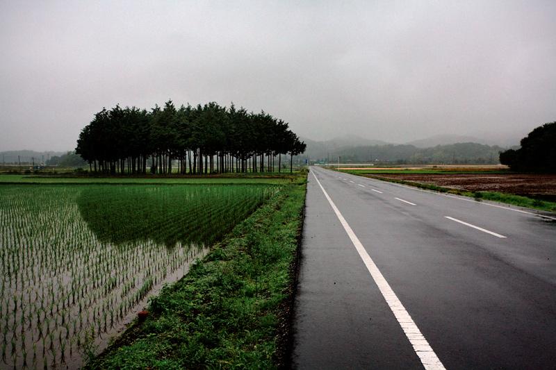 1水田と道路